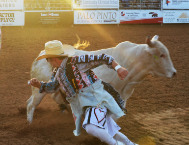 Clown rustling Bull at Palo Pinto Livestock Association Rodeo