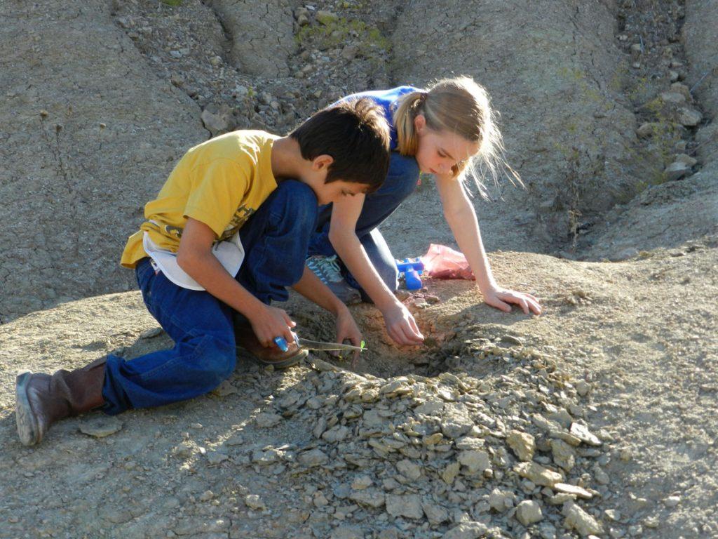 Kids digging for fossils